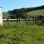 Daccombe fields