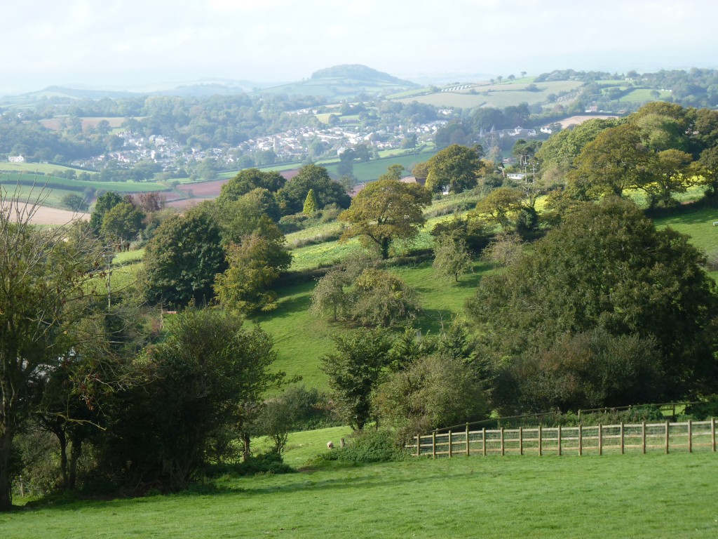 Denbury Hill from Connybeare Lane
